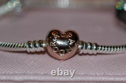 AUTHENTIC NEW PANDORA ROSE Fun In Love Gift Set, bracelet, 2 clips and charm