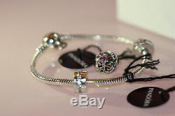 NWT Valentine's 2020 PANDORA Freehand Heart Gift Set, bracelet, 2 clips & charm